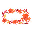 autumn leaves with red berry and maple leaf frame vector image vector image