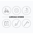 Biking biceps and ice hockey icons vector image
