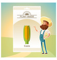 pack of corn seeds icon vector image vector image