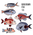 set of hand drawn stylized fishes vector image vector image