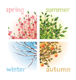 4 seasons in 1 tree vector image