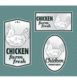 Chicken vintage labels set vector image vector image