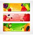 Fruits banners horizontal vector image vector image