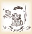 grain meal wheat hand drawn