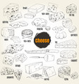 hand drawn different types of cheese collection vector image