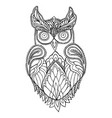 owl coloring page for children and adults vector image