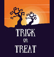 halloween sale poster design collection vector image