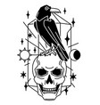magic with raven and skull mystic vector image