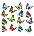 Set of realistic colorful butterflies vector image vector image