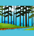 trees and river in the forest vector image vector image