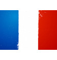 vintage grunge texture flag of france vector image