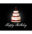 Happy birthday cake background vector image