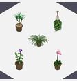 isometric houseplant set of plant flower grower vector image