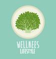 lettuce vegetable wellness lifestyle vector image