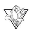 Magnolia in triangle vector image vector image