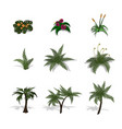 set of plants in isometric style vector image vector image