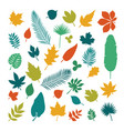 silhouettes of leaves collection of leaves in vector image vector image
