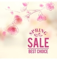 Spring sale and flowers vector image vector image