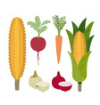 white background with colorful set of vegetables vector image vector image