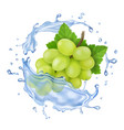 white grape in water splash realistic branch vector image vector image