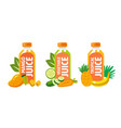 fruit and vegetable juices in flat style vector image vector image