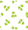 seamless grass background parsley green leaves on vector image vector image
