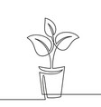 continuous one line drawing plant in pot house vector image