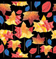 multicolored autumn pattern maple leaves vector image vector image