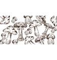 mushrooms line art pattern autumn fall veggies vector image