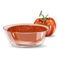 tomato salsa vector image vector image