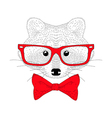 cute cheerful fashion raccoon portrait Hand drawn vector image vector image