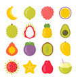 exotic fruits isolated colorful icons set vector image