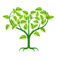green heart tree vector image vector image