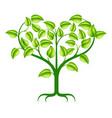 green heart tree vector image