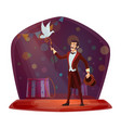 magician or performing tricks vector image vector image