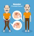 movember prostate cancer vector image