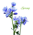 Blue Watercolor Flowers vector image vector image
