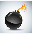 Bomb new vector image vector image