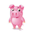 cartoon pig cute pig isolated on white background vector image