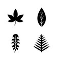 floral branch leaf plant simple related icons vector image
