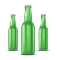realistic detailed green glass beer bottle vector image vector image