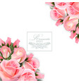 background with pink roses flowers and vector image vector image