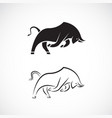 bull design on white background wild animals easy vector image vector image