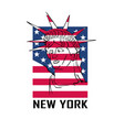 flag for new york city logo with state liberty vector image