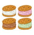 ice cream cookie sandwich in various flavor vector image