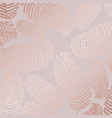 pattern with fern leaves and imitation of rose vector image vector image
