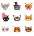 set of funny cats heads of different breeds vector image vector image