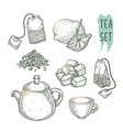 sketch of tea elements include teapot teabags vector image