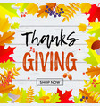 thanksgiving sale web banner september shopping vector image