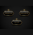 vip premium and exclusive black glass labels with vector image vector image